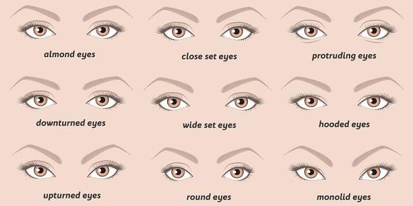 انواع العيون بالصور البديل